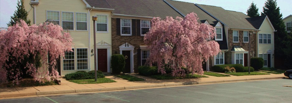 Exterior of  Orchard Glen Apartments for rent in Manassas, VA